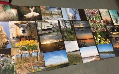 Dank aan alle deelnemers foto wedstrijd